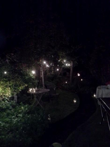 Dark Garden Lights
